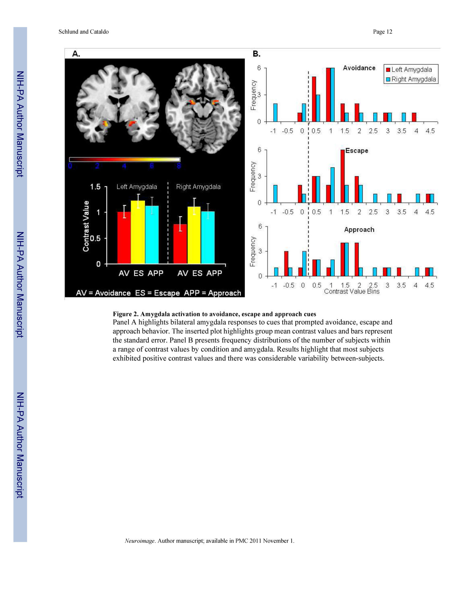 Amygdala involvement in human avoidance, escape and approach behavior                                                                                                      12