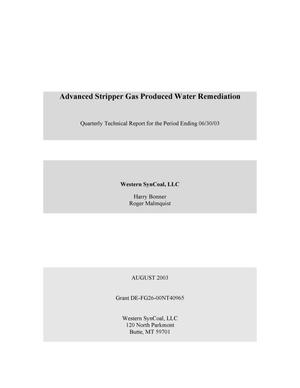 Primary view of object titled 'Advanced Stripper Gas Produced Water Remediation, Quarterly Technical Report: April-June 2003'.