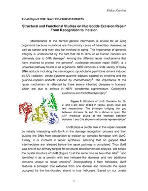 Primary view of object titled 'Structural and Functional Studies on Nucleotide Excision Repair From Recognition to Incision.'.