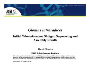 Primary view of object titled 'Glomus intraradices: Initial Whole-Genome Shotgun Sequencing and Assembly Results'.