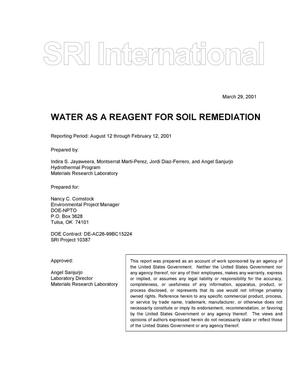 Primary view of object titled 'WATER AS A REAGENT FOR SOIL REMEDIATION'.