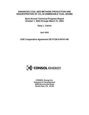 Primary view of object titled 'ENHANCED COAL BED METHANE PRODUCTION AND SEQUESTRATION OF CO2 IN UNMINEABLE COAL SEAMS'.