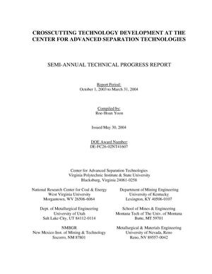 Primary view of object titled 'CROSSCUTTING TECHNOLOGY DEVELOPMENT AT THE CENTER FOR ADVANCED SEPARATION TECHNOLOGIES'.
