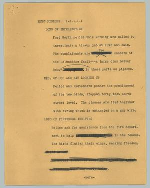 Primary view of object titled '[News Script: Hung pigeons]'.