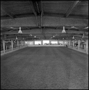 Primary view of object titled '[Cutter Bill Arena floor]'.