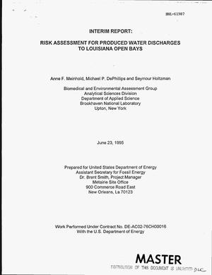 Primary view of object titled 'Risk assessment for produced water discharges to Louisiana Open Bays'.