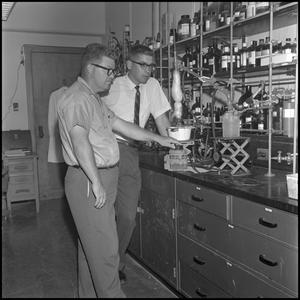 Primary view of object titled '[Research participants working in lab]'.