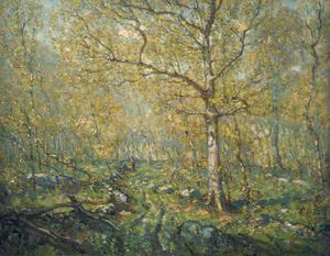 Primary view of object titled 'Spring Woods'.