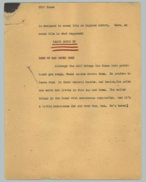 Primary view of object titled '[News Script: Foxes]'.