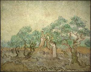Primary view of The Olive Orchard