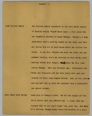 Primary view of object titled '[News Script: Rabbit]'.