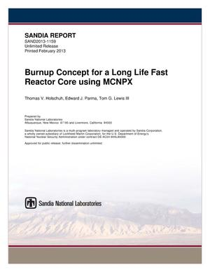 Primary view of object titled 'Burnup concept for a long-life fast reactor core using MCNPX.'.