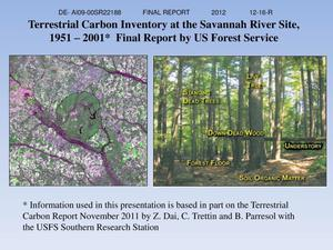 Primary view of object titled 'Terrestrial Carbon Inventory at the Savannah River Site, 1951 – 2001.'.