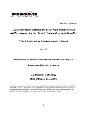 Primary view of object titled 'A feasibility study exploring the use of high-pressure xenon (HPXe) detectors for the characterization of spent fuel bundles'.