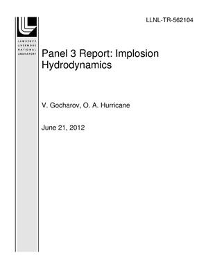 Primary view of object titled 'Panel 3 Report: Implosion Hydrodynamics'.