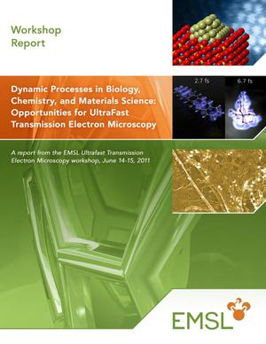 Primary view of object titled 'Dynamic Processes in Biology, Chemistry, and Materials Science: Opportunities for UltraFast Transmission Electron Microscopy - Workshop Summary Report'.