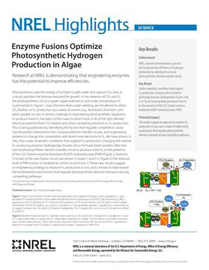 Primary view of object titled 'Enzyme Fusions Optimize Photosynthetic Hydrogen Production in Algae (Fact Sheet)'.