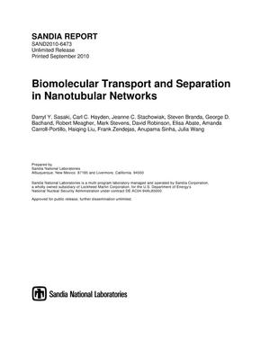Primary view of object titled 'Biomolecular transport and separation in nanotubular networks.'.