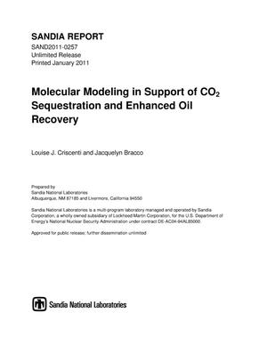 Primary view of object titled 'Molecular modeling in support of CO2 sequestration and enhanced oil recovery.'.