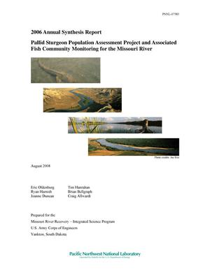 Primary view of object titled '2006 Annual Synthesis Report, Pallid Sturgeon Population Assessment Program and Associated Fish Community Monitoring for the Missouri River'.
