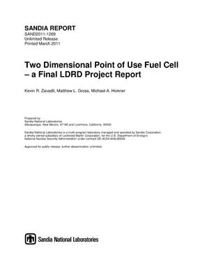 Primary view of object titled 'Two dimensional point of use fuel cell : a final LDRD project report.'.