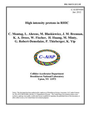 Primary view of object titled 'High intensity protons in RHIC'.