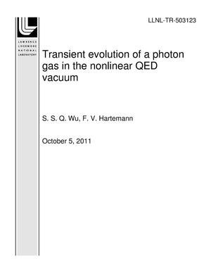 Primary view of object titled 'Transient evolution of a photon gas in the nonlinear QED vacuum'.
