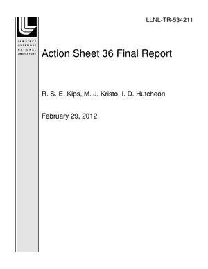 Primary view of object titled 'Action Sheet 36 Final Report'.