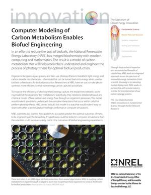 Primary view of object titled 'Computer Modeling of Carbon Metabolism Enables Biofuel Engineering (Fact Sheet)'.