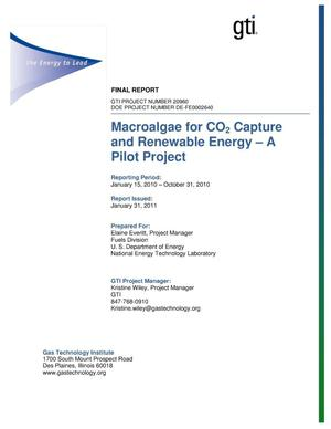 Primary view of object titled 'Macroalgae for CO{sub 2} Capture and Renewable Energy - A Pilot Project'.