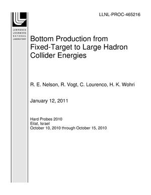 Primary view of object titled 'Bottom Production from Fixed-Target to Large Hadron Collider Energies'.
