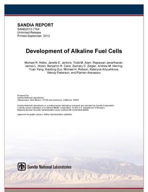 Primary view of object titled 'Development of alkaline fuel cells.'.