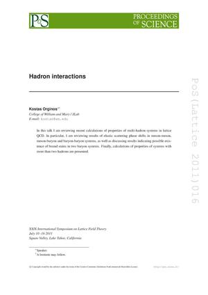 Primary view of object titled 'Hadron interactions'.