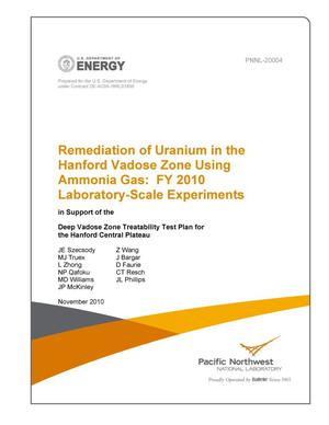 Primary view of object titled 'Remediation of Uranium in the Hanford Vadose Zone Using Ammonia Gas: FY 2010 Laboratory-Scale Experiments'.