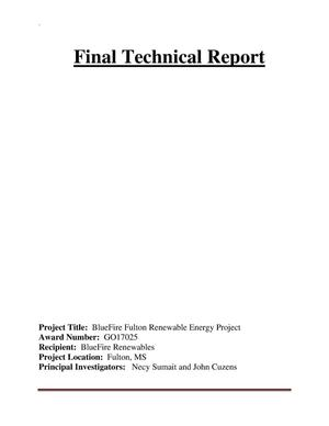 Primary view of object titled 'Final Technical Report'.