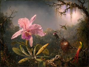 Primary view of object titled 'Cattleya Orchid and Three Brazilian Hummingbirds'.