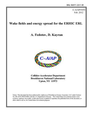 Primary view of object titled 'Wake fields and energy spread for the ERHIC ERL'.