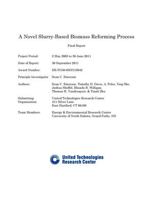 Primary view of object titled 'A Novel Slurry-Based Biomass Reforming Process Final Technical Report'.