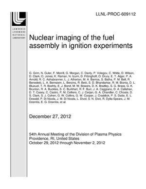 Primary view of object titled 'Nuclear imaging of the fuel assembly in ignition experiments'.