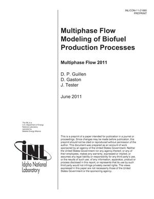 Primary view of object titled 'Multiphase Flow Modeling of Biofuel Production Processes'.