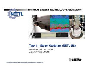 Primary view of object titled 'Task 1 Steam Oxidation (NETL-US) Portsmouth'.