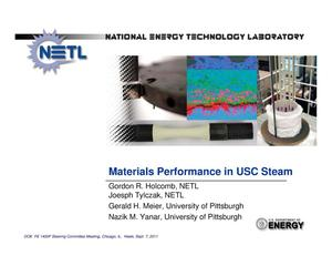 Primary view of object titled 'Materials Performance in USC Steam'.