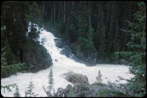 Primary view of object titled 'Yoho B.C., Kicking Horse River, Yoho River'.