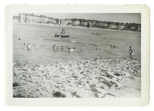 Primary view of object titled '[Children in lake]'.