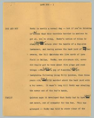 Primary view of object titled '[News Script: Lawn dog]'.