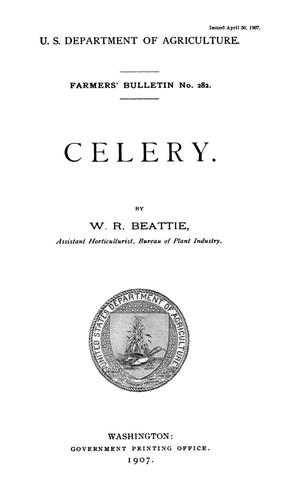 Primary view of object titled 'Celery'.