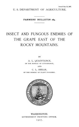 Primary view of object titled 'Insect and Fungous Enemies of the Grape East of the Rocky Mountains'.