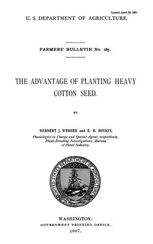 The Advantage of Planting Heavy Cotton Seed