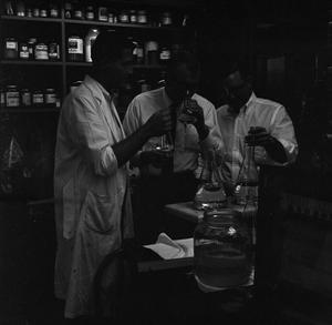 Primary view of object titled '[Three students examining beakers in the chemistry lab]'.