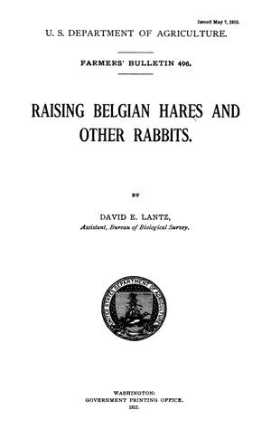 Primary view of object titled 'Raising Belgian Hares and Other Rabbits'.